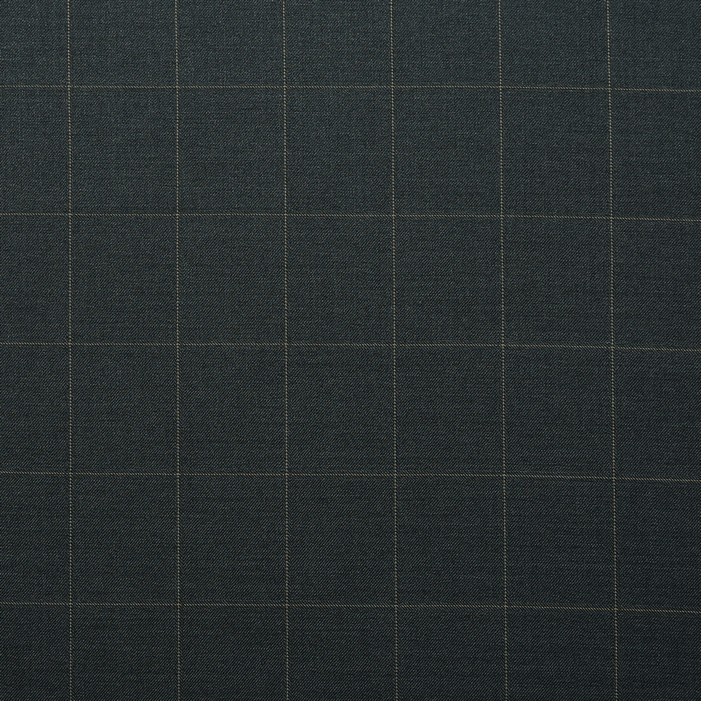 10011 Dark Grey with Tan Windowpane Check