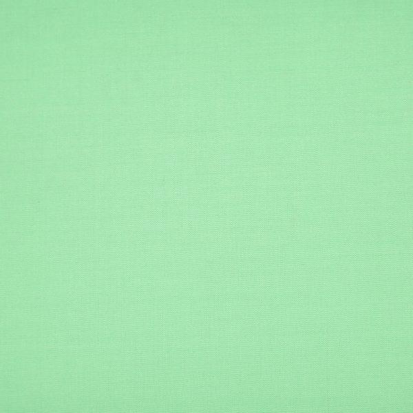 16043 Pale Green Plain