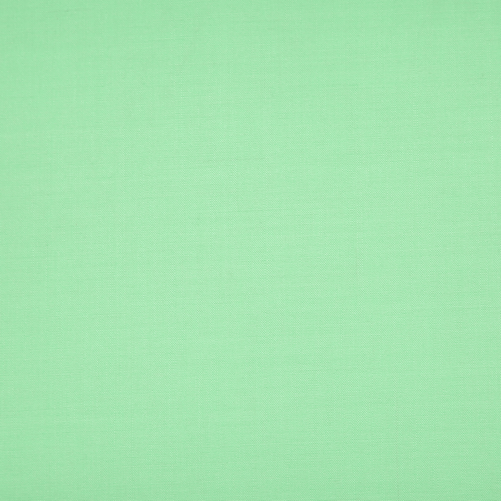 16043 Pale Green Plain